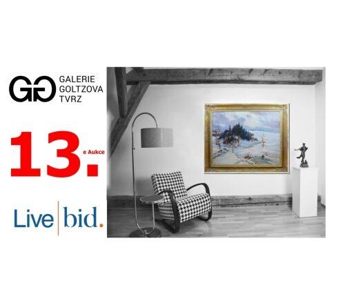 13. e Aukce na LiveBid.cz