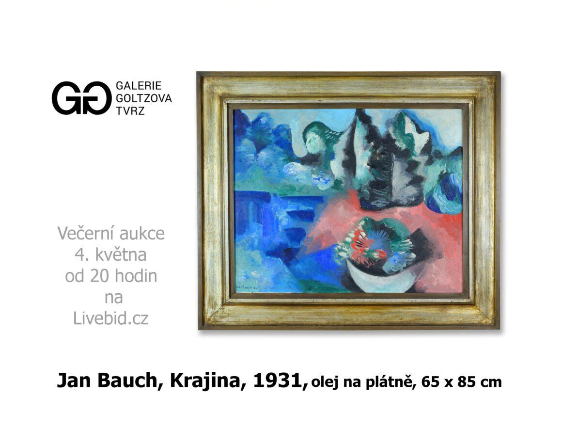 Večerní aukce Galerie Goltzova tvrz